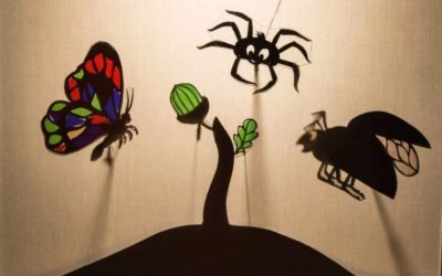 Жена Бабочка, муж Жук и Паук