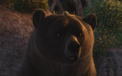 Храбрая Медведица