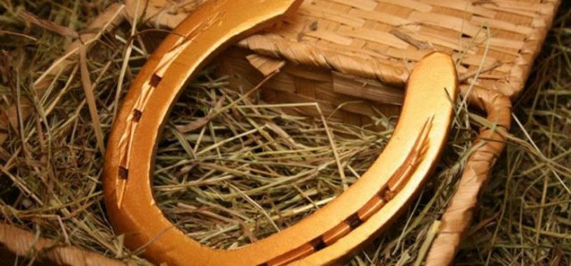 Куль пшеницы, плащ и подковы